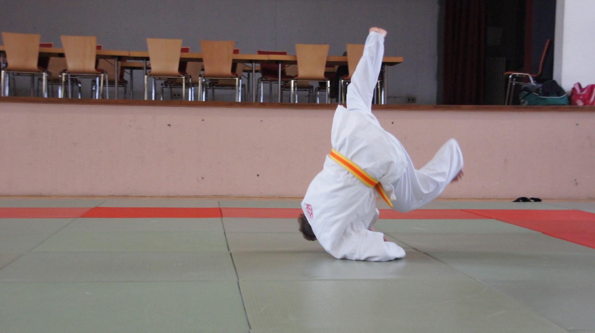 Judo_Familientag_2014_05.04.2014_10-42-28
